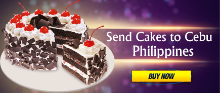 send cakes to cebu philippines