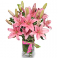 send lily flowers to cebu, lily flowers delivery in cebu, online lily flowers to cebu